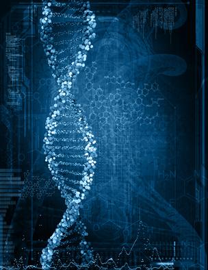Hermetik – Beschleunigte menschliche Evolution