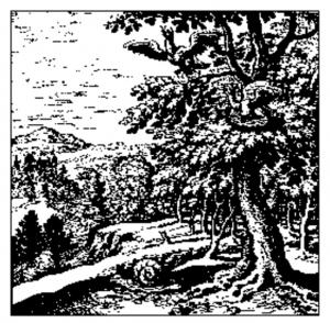 Lambspring 8